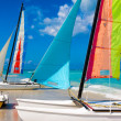 Catamarans with colorful sails landed on a cuban beach — Stock Photo