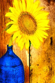 Bright yellow sunflower on a blue vase — Stock Photo
