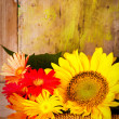 Royalty-Free Stock Photo: Basket with sunflowers and daisies