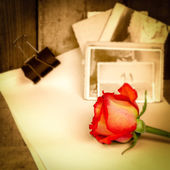 Red rose,vintage sepia photos and old paper — Stock Photo