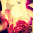 Red rose with and out of focus weeding picture - Stock Photo