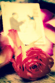 Red rose with and out of focus weeding picture — Stock Photo