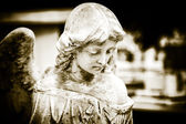 красивый старинный ангел на кладбище — Стоковое фото