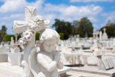 Infant angel on a cemetery — Foto Stock