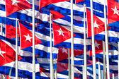 Cuban flags — Stock Photo