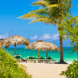 Varadero beach in Cuba with a coconut tree — Stock Photo #25999315