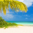 Beautiful tropical beach on the cuban island of Cayo Coco — Stock Photo