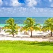 Tropical beach in Cuba — Stock Photo