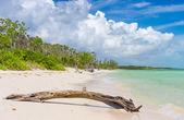 Virgin tropical beach at Coco Key (Cayo Coco) in Cuba — Stock Photo