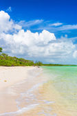 Vertical image of a deserted tropical beach at Coco Key in Cuba — Stock Photo