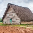 Tobacco curing barn in Pinar del Rio, Cuba — Stock Photo #45046103