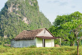 Rural scene with a rustic house at the Vinales Valley in Cuba — Stock Photo