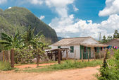 Typical rustic wooden house at the Vinales Valley in Cuba — Stock Photo