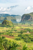 View of the Vinales Valley in Cuba on the early morning — Stock Photo