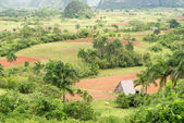 Aerial view of the Vinales Valley in Cuba — Stock Photo