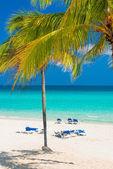 The beautiful Varadero beach in Cuba — Stock Photo