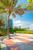 Boulevard next to the shore at Miami Beach — Stock Photo
