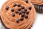 Gourmet chocolate iced cupcakes — Stock Photo