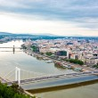 View of Budapest and the river Danube from the Citadella, Hungary — Stock Photo #17633667