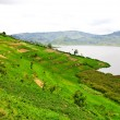 Lake Bunyonyi in Uganda, Africa — Stock Photo #17633699