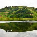 Lake Bunyonyi in Uganda, Africa — Stock Photo #17633719