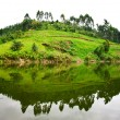 Lake Bunyonyi in Uganda, Africa — Stock Photo #17633735