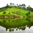 Lake Bunyonyi in Uganda, Africa — Stock Photo #17633735