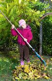 Girl removes leaves in the garden — Stock Photo