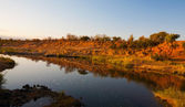 African landscape in the Kruger National Park, South Africa — Stock Photo