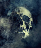 Smoking kills. Skull with cigarette surrounded by smoke — Stock Photo