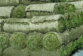 Rolled Turf — Stock Photo