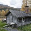 Old Cabin — Stock Photo #25926097