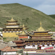 Stock Photo: Golden roof of Langmusi temple , sichuan