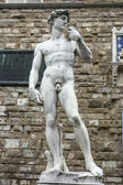 David (Michelangelo)  — Stock Photo