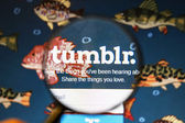 Close up of tumblr website — Stock Photo