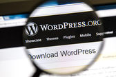 Wordpress website — Stock Photo
