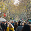 BARCELONA, SPAIN - DECEMBER 20: La Rambla on December 20, 2011 i — Stock Photo