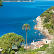 Forno beach, Elba island. - Stock Photo