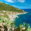 Chiessi, Elba island. Italy. — Stock Photo