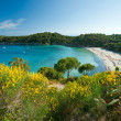Fetovaia beach, Elba island. Italy. — Stock Photo