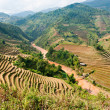 North Vietnamese Landscape. — Stock Photo #12238566