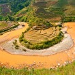 Panoramic view of Rice terrace field and river in North Vietnam. — Stock Photo #12422109