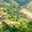 North Vietnamese Landscape. — Stock Photo #12422240