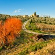 Tuscany landscape, Chianti area, Italy. — Stock Photo #12422540