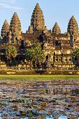 Angkor Wat Temple at sunset, Siem reap, Cambodia. — Stock Photo