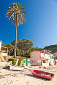 Forno beach, on the Biodola Bay, Elba island. — Stock Photo