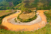 Panoramic view of Rice terrace field and river in North Vietnam. — Stock Photo