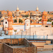 Stock Photo: View of Bikaner at sunset, India.