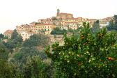 View of Poggio, Marciana, Elba island, Italy. — Stock Photo