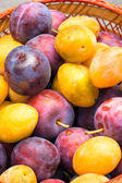 Basket of fruits, yellow and purple plum. — Stock Photo